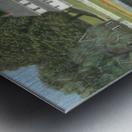 Geese at Hawley Pond - Newtown Series 16X20 Metal print