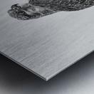 Gyrfalcon Metal print