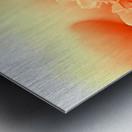 Heavenly Peony Orange Metal print