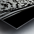 ShivaSakti II Metal print