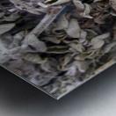 KUNG FU Metal print
