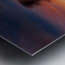Foxgloves at sunset Metal print