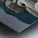 Lake Tahoe Rocky Cove Metal print