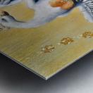 Rosellia d or   Metal print