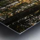 Wayfinder Metal print