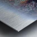SEASIDE PATH Metal print