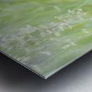 Herbe haute Metal print