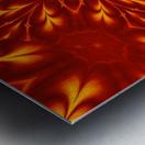 Fire Flowers 9 Metal print