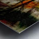 0183_1449614798.1086 Metal print