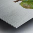 Spanish Lime Metal print