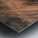 Lake Erie waves 7 Metal print