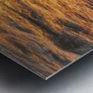 Lake Erie waves 5 Metal print