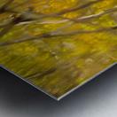 Autumnal swirls reflections Metal print