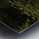 Water-Break-its-Neck landscape Metal print