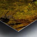 Arc de Treeomph Metal print
