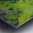 Pond Impression metal