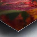Rouge dautomne Impression metal