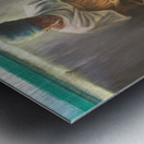 The Nutmeg Sorter Metal print