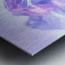 Mount Fairweather Canada Metal print