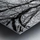 First Snowfall Metal print
