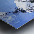 The Cascades Metal print