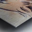 1946 Nevada Wolfpack Art Metal print