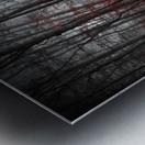Bloody River Metal print