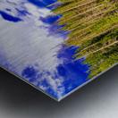 DSC00906 Metal print