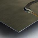 Wesley Allen Shaw 01769 Metal print