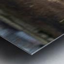 Wesley Allen Shaw 01943 Metal print