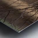 Wesley Allen Shaw 02117 Metal print