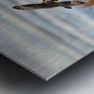 Wesley Allen Shaw 04091 Metal print