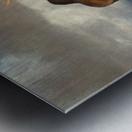20201101  DSC4194 txtr Metal print