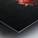 Etude Zen 3k Metal print