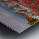 Bear Rocks Preserve apmi 1792 Metal print