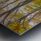 Colors of Nature apmi 1857 Metal print