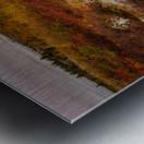 Colors of Nature apmi 1782AL Metal print
