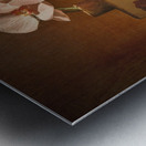 Etude Zen 7e Metal print