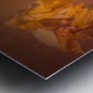 Etude Zen 7 p Metal print