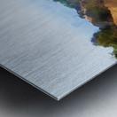 beauty of la Metal print