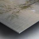 Roasting The Hump Rib Metal print