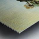 Elk Swimming the Platte Metal print