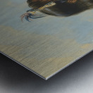 Mawoma Metal print