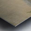 Attrapez des Chevaux Metal print