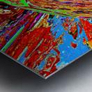 Baudi Metal print