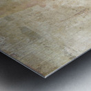 Strix Varia Metal print