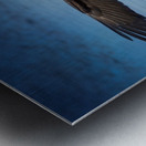 Inbound Metal print