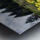 Flowers on the Hills Metal print