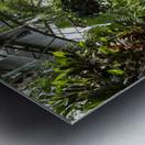 Urban Forests Metal print