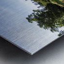 Look Through Lincoln Park Metal print